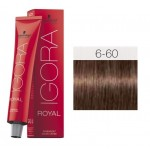 TINTE IGORA ROYAL ABSOLUTES DARK BLONDE CHOCOLATE NATURAL 6-60 60 ml SCHWARZKOPF