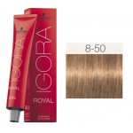 TINTE IGORA ROYAL ABSOLUTES LIGHT BLONDE GOLD NATURAL 8-50 60 ml SCHWARZKOPF