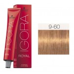 TINTE IGORA ROYAL ABSOLUTES CHOCOLATE NATURAL 9-60 60 ml SCHWARZKOPF