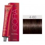 TINTE IGORA ROYAL ABSOLUTES MEDIUM BROWN CHOCOLATE NATURAL 4-60 60 ml SCHWARZKOPF