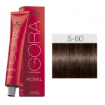 TINTE IGORA ROYAL ABSOLUTES LIGHT BROWN CHOCOLATE NATURAL 5-60 60 ml SCHWARZKOPF