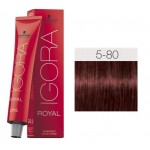 TINTE IGORA ROYAL ABSOLUTES LIGHT BROWN RED NATURAL 5-80 60 ml SCHWARZKOPF