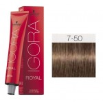 TINTE IGORA ROYAL ABSOLUTES MEDIUM BLONDE GOLD NATURAL 7-50 60 ml SCHWARZKOPF