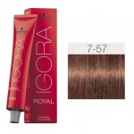 TINTE IGORA ROYAL RUBIO MEDIO GOLD COPPER 7-57 60 ml SCHWARZKOPF